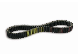 Courroie XK Belt